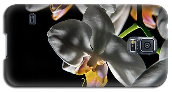 Orchid On Fire Galaxy S5 Case