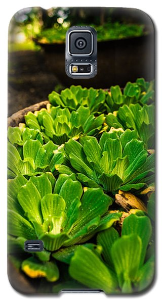 Orchid Pond Galaxy S5 Case