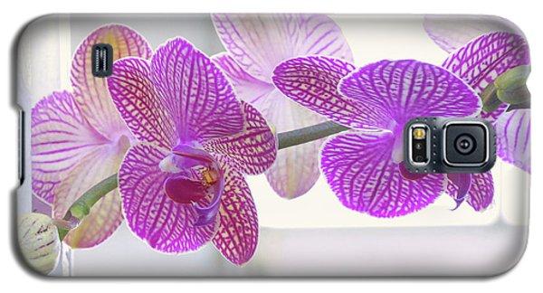 Orchid Spray Galaxy S5 Case