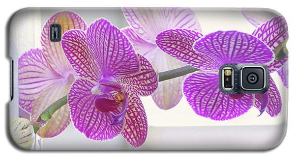 Orchid Spray Galaxy S5 Case