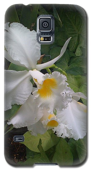 Galaxy S5 Case featuring the photograph orchid VIII by Fanny Diaz