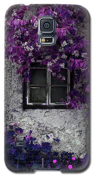 Orchid Vines Window And Gray Stone Galaxy S5 Case by Brooke T Ryan