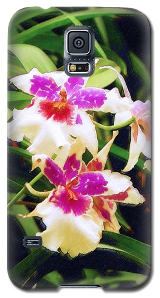Galaxy S5 Case featuring the painting Orchids 1 by Sandy MacGowan