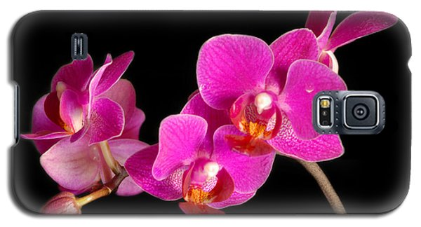 Galaxy S5 Case featuring the photograph Orchids by Alana Ranney