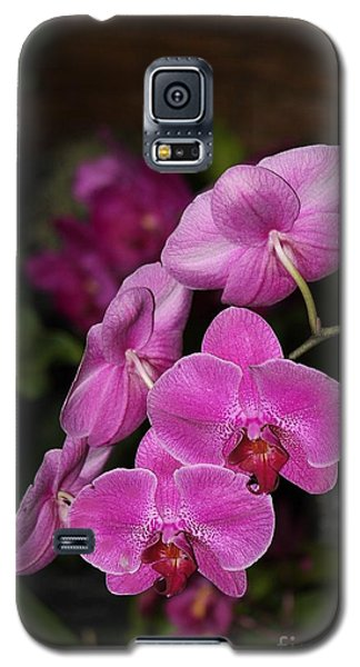 Orchids Alicia Galaxy S5 Case