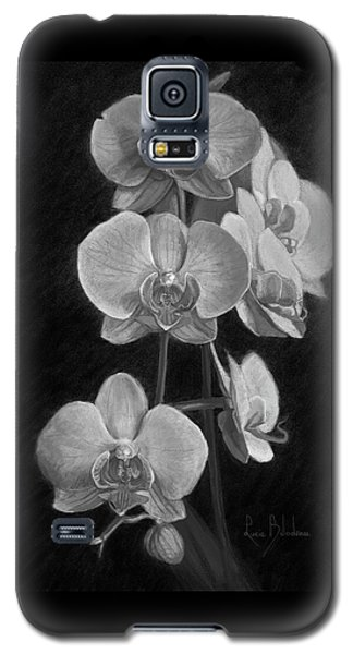 Orchid Galaxy S5 Case - Orchids - Black And White by Lucie Bilodeau
