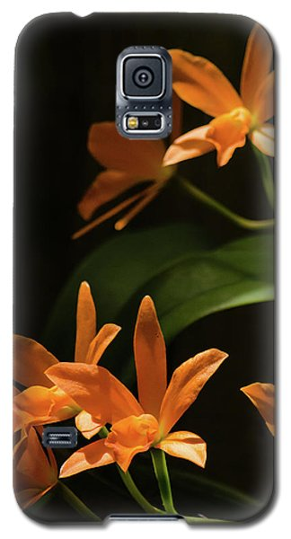 Orchids In Orange Galaxy S5 Case