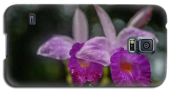 Orchids Love The Rain Galaxy S5 Case