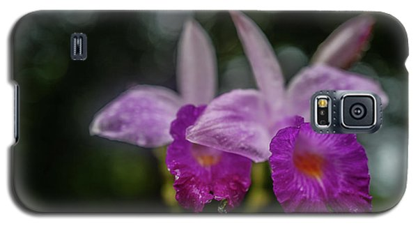 Orchids Love The Rain Galaxy S5 Case by Jocelyn Kahawai