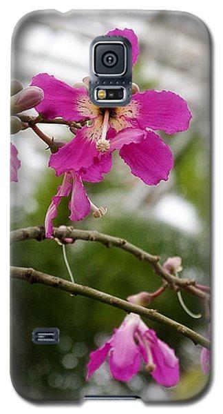 Orchids Myriad Botanical Gardens Okc Galaxy S5 Case