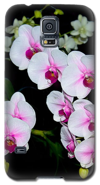 Orchids On Black Galaxy S5 Case