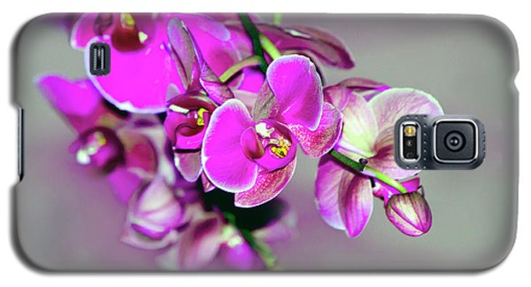 Galaxy S5 Case featuring the photograph Orchids On Gray by Ann Bridges