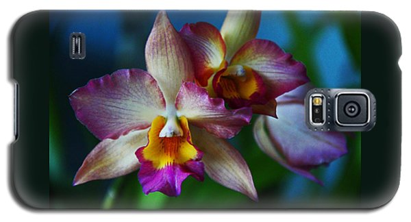 Orchids - Trio Galaxy S5 Case