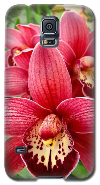 Orchids Up Close Galaxy S5 Case