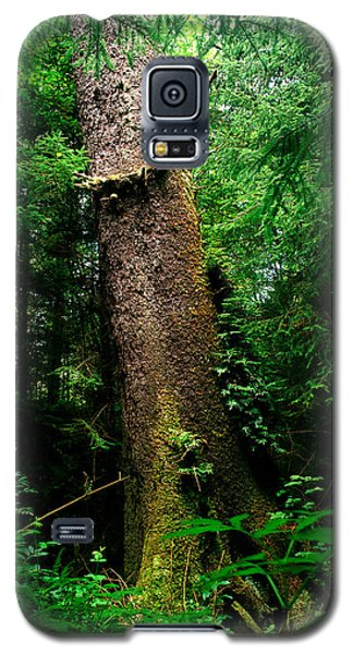 Oregon - Ecola State Park 3 Galaxy S5 Case