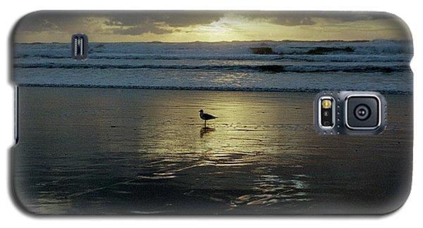 Oregon Coast 3 Galaxy S5 Case