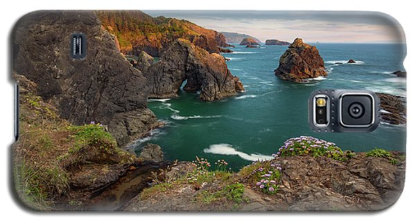 Galaxy S5 Case featuring the photograph Oregon Coastal Scenic by Leland D Howard