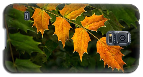 Oregon Grape Autumn Galaxy S5 Case
