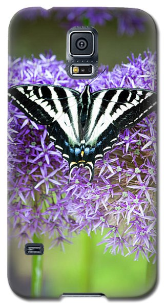 Galaxy S5 Case featuring the photograph Oregon Swallowtail by Bonnie Bruno