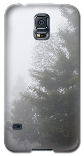 Oregon Winter Galaxy S5 Case