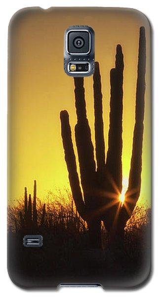 Organ Pipe Cactus Galaxy S5 Case
