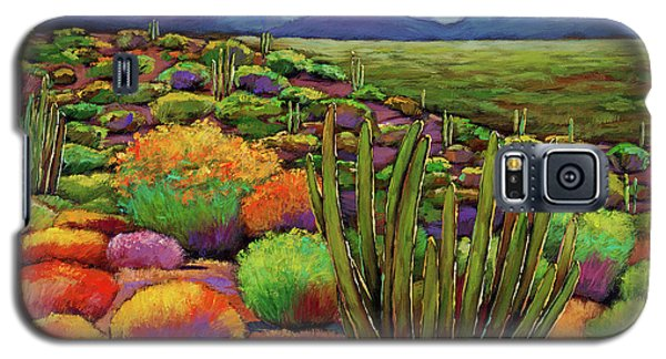 Landscape Galaxy S5 Case - Organ Pipe by Johnathan Harris