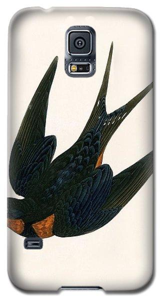Oriental Chimney Swallow Galaxy S5 Case by English School