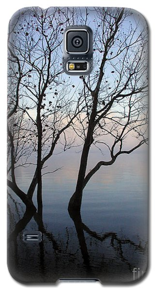 Galaxy S5 Case featuring the photograph Original Dancing Tree by Paula Guttilla