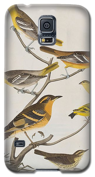 Orioles Thrushes And Goldfinches Galaxy S5 Case by John James Audubon