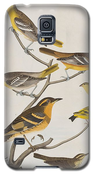 Orioles Thrushes And Goldfinches Galaxy S5 Case