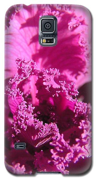Ornate Kale Galaxy S5 Case