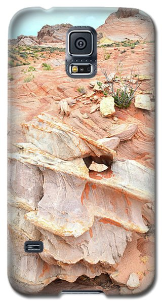 Galaxy S5 Case featuring the photograph Ornate Rock In Wash 4 Of Valley Of Fire by Ray Mathis