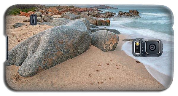 Orri Beach Galaxy S5 Case