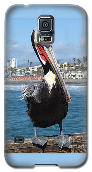 Oside Charlie Galaxy S5 Case by Dana Patterson