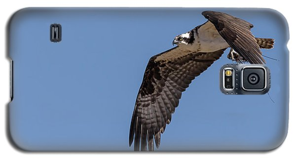 Galaxy S5 Case featuring the photograph Osprey 2017-1 by Thomas Young
