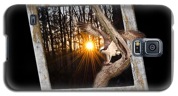 Osprey At Sunset  Black Galaxy S5 Case by Donna Brown
