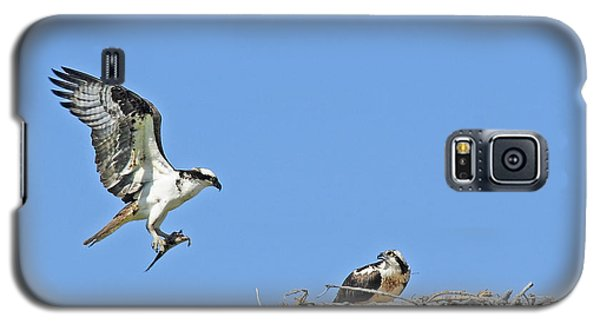 Osprey Brings Fish To Nest Galaxy S5 Case