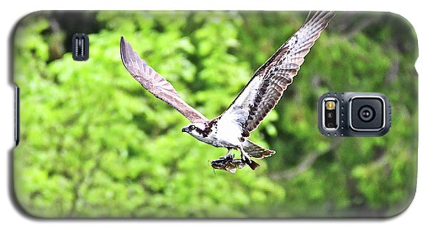 Osprey Fishing Galaxy S5 Case