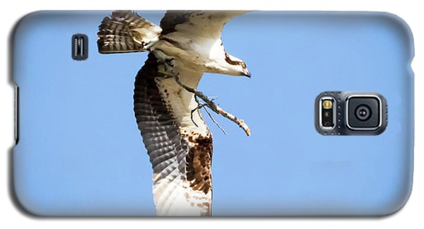 Galaxy S5 Case featuring the photograph Osprey In Flight by Ricky L Jones