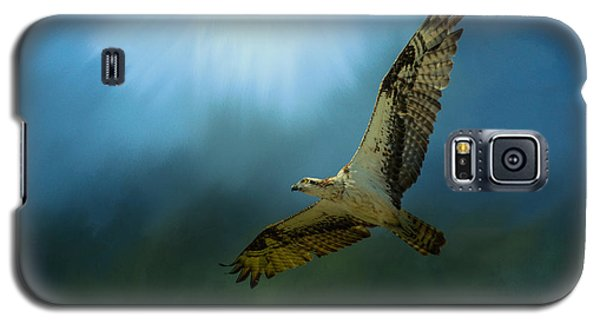 Osprey In The Evening Light Galaxy S5 Case