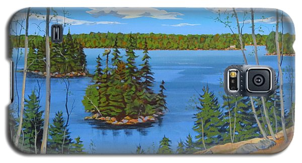 Osprey Island Galaxy S5 Case