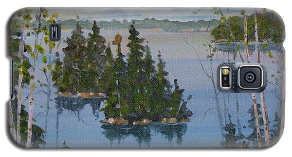 Osprey Island Study Galaxy S5 Case