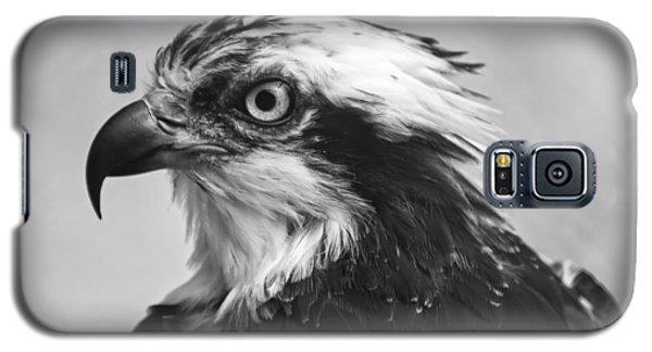 Osprey Monochrome Portrait Galaxy S5 Case