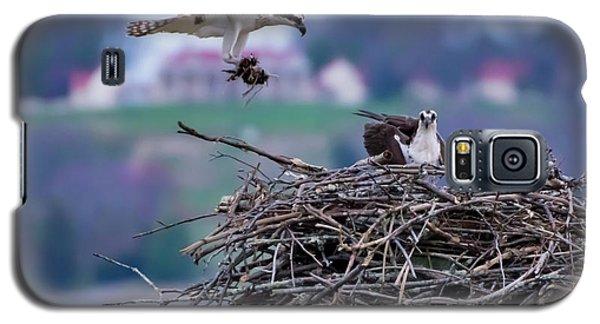 Osprey Nest Building Galaxy S5 Case