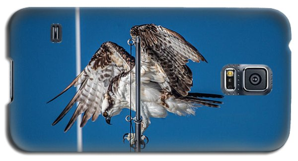 Osprey On The Boat Rod Galaxy S5 Case