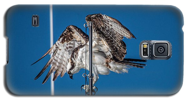 Osprey On The Boat Rod Galaxy S5 Case