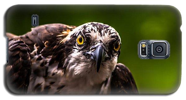 Osprey Profile 2 Galaxy S5 Case