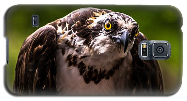 Osprey Profile Galaxy S5 Case