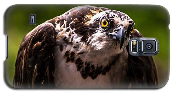 Osprey Profile Galaxy S5 Case