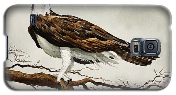 Osprey Sea Hawk Galaxy S5 Case by James Williamson